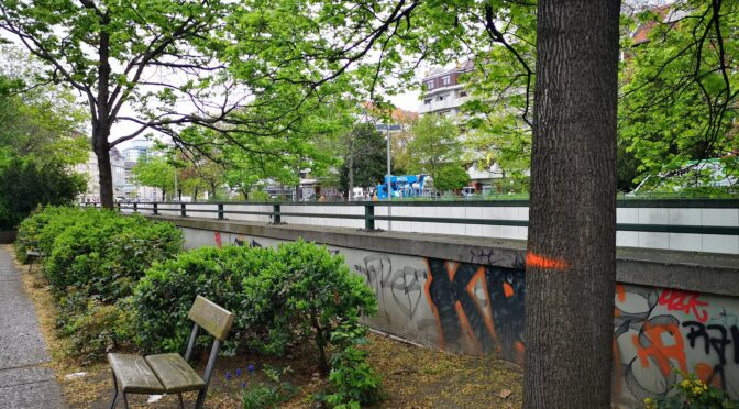 Baumarbeiten und Baumfällungen am Bundesplatz